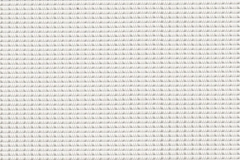 X2001-White